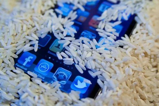 rice dry